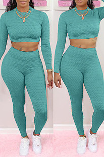 Light Blue Scale Lines Long Sleeve Round Neck Crop Top High Waist Bodycon Pants Casual Sets NYF8011-1