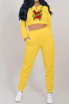 Yellow Autumn And Winter Velvet Long Sleeve Stand Collar Zipper Fleece Carrot Pants Casual Sport Sets YMT6224-2