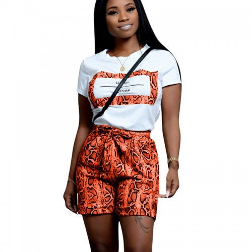 Orange Casual T Shirts Print Shorts Two Pieces Sets CM598