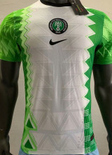2020 Nigeria Home Player Version Soccer Jersey