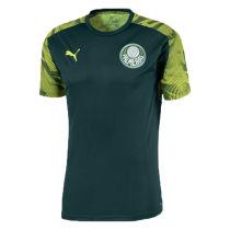 2020/21 Palmeiras Green Training Soccer Jersey