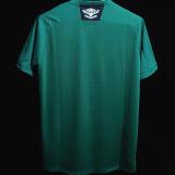 2020/21 Fluminense Green GK Soccer Jersey