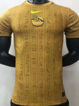 2021/22 Egypt Gold Player Training Jersey