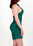 Backless Halter Lace Bodycon Dress