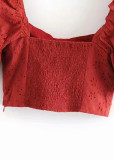 Embroidered Crop Top in Rust