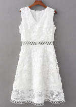 Embroidered Lace Dress ( in 2 Colors )