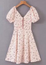 Short Sleeve Dress in Blush Spot