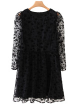 Embroidered Sheer Mesh Dress in Black