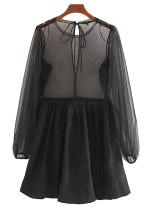 Sheer Mesh Dress in Black
