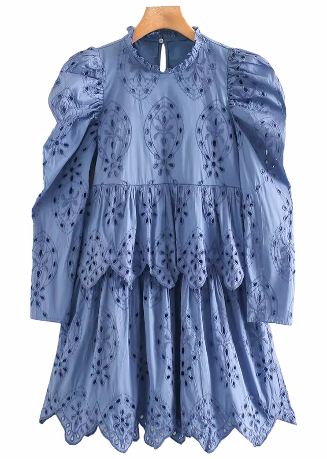 Embroidered Eyelet Detail Dress in Blue