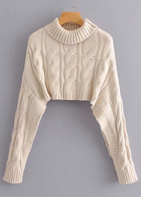 Crop Sweater ( in 3 Colors )