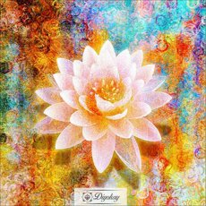 Diamond Painting - Beautiful flowers 101