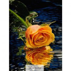 Diamond Painting - Beautiful flowers