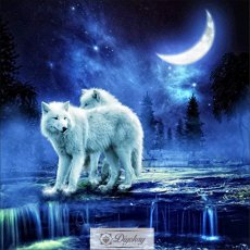 Diamond Painting - Wolf 9