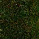 decorative moss for wedding