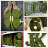Dried Moss Mat -Peel & Stick, Wedding Birthday Party Fairy Garden Decorations, (14  X 9 Inch )