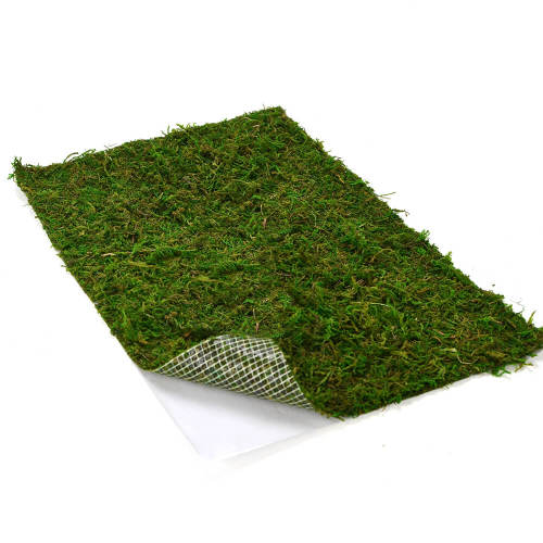 Dried Moss Mat -Peel & Stick, Wedding Birthday Party Fairy Garden Decorations, (14  X 9 Inch )
