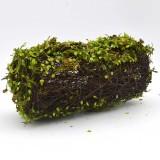 green moss decor                                             covers