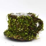 Green Moss Teacup Flower Basket Wedding Decor