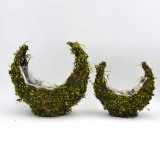 moss roll                                             natural