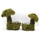 mushroom planter moss decor