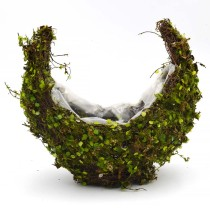 Moss Flower Basket Planter in Crescent Moon Shape