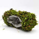 Moss Basket Planter for Spring Decor-13 inch Drop-in Fake Grass with Liner