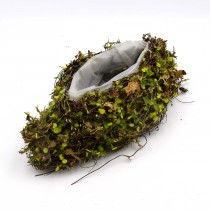 Succulents Pot, Moss Covered Basket for Garden Home Decor