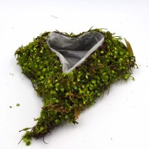 Wedding Heart Moss Covered Planter, Spring Summer Farmhouse decor