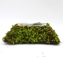 Crafting Moss Pot, Fake Moss Planter in Rectangle Shape for Wedding Decor