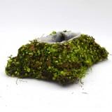fake moss for fairy garden                                             bag