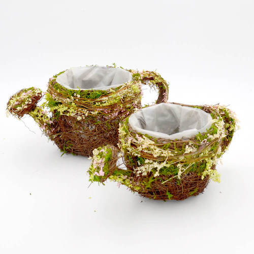 Preserved Moss & Twig Watering Can Planter Box with Natural Flower