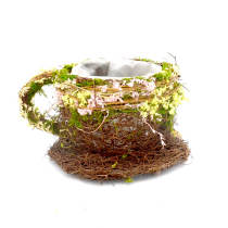 Preserved Moss Teacup Planter Box with Natural Twig Holder