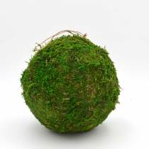 Decorative Moss Ball, Preserved Moss Hanging Ornaments Home Decorative Accessories