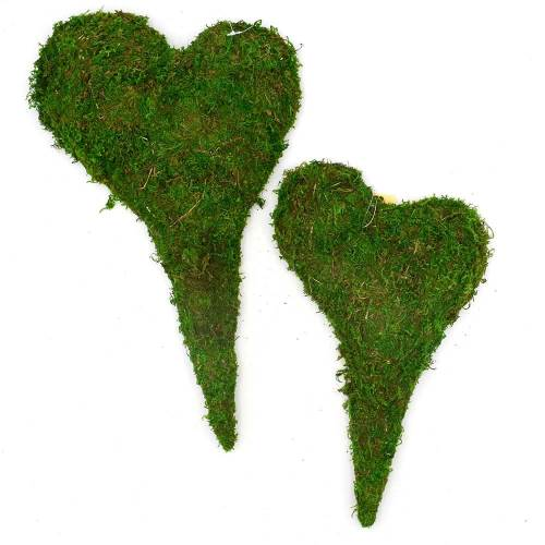 Preserved Heart Moss Arts and Crafts, Dried Forest Moss Decoration