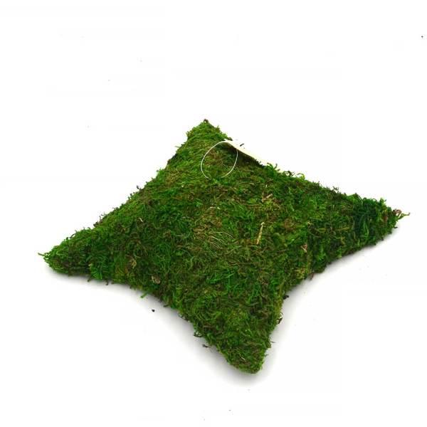 Decorative Pillow Shaped Green Moss for Garden Crafts