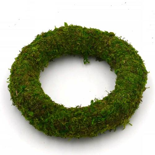 Preserved Natural Green Moss Wreath for DIY Arts and Crafts
