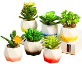3 Inch Succulent Pots, Ceramic Flower Planter Pot with A Hole for Home Decorations (Pack of 6)