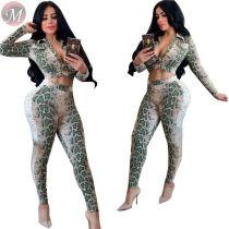 9082913 newest crop top long sleeve snake skin 2019 women fashion 2 piece autumn casual jumpsuit set