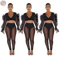9101224 best design mesh ruffle edge sleeve transparent sexy 2019 Pant Women Two Piece Outfits Set