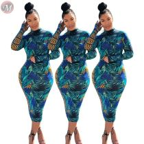 9112023 hot selling round neck long sleeve fall Women Fashion Casual Floral Printed Dress