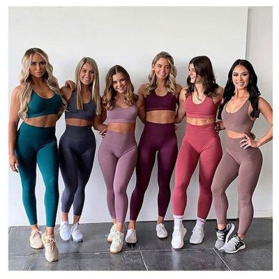Best seller fashion tight yoga set Seamless blank yoga pants active wear gym sets for women