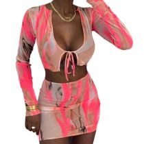 Fashion Casual 2020 Fall New Mesh Print Sexy Perspective 2 Pcs Dress Set Skirt And Top Two Piece Skirt Set Women Clothing