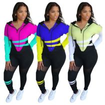 Newest Design Fashion Patchwork Color Hoodie For Fall And Winter Two Piece Set Women Clothing Women Sport Set