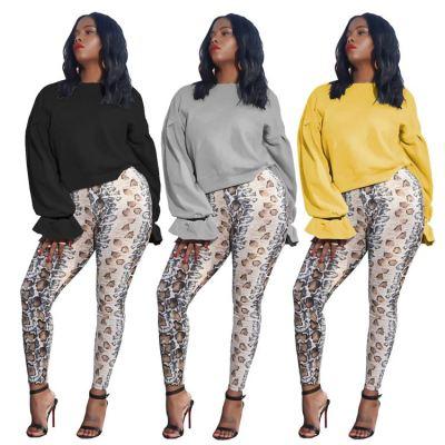 Newest Design Womens Clothes 2020 Wholesale Fashion Womens Hoodies Sweatshirts Long Sleeve Hooded Women'S Hoodies