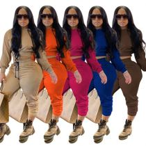 Wholesale Price Womens Winter Clothing 2020 Fashion Casual Hooied Solid Color Two Piece Set Women Clothing