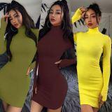 Best Seller Good Quality Women Fashion Clothing 2020 Autumn Winter Long Sleeve Choker Woman Casual Dress