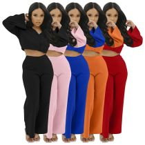 Wholesale Price Womens Winter Clothing 2020 Fashion Sexy Solid Color Women Top And Cigarette Pants Sets Two Piece
