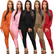 Best Design 2021 Winter Long Sleeve Solid Color Jogging Womens Casual Two Piece Set Women Clothing Women Hoodie Sets