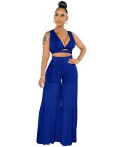 1040130 Fashionable Casual Women Clothing 2 Piece Pants Set